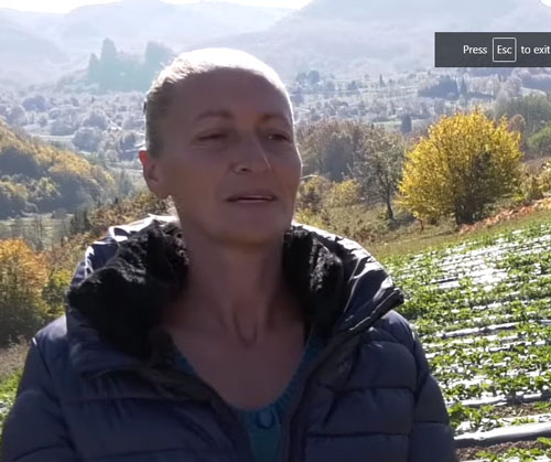 Nataša Mihajlović