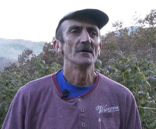 Vuko Nedović