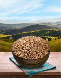 Pšenica u znu - 1kg